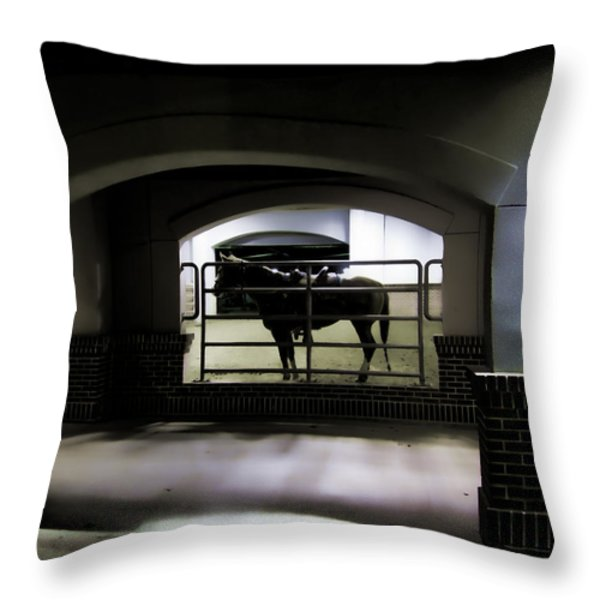 The End of Excitement Throw Pillow by Douglas Barnard