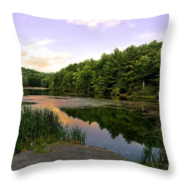 The End of the Road Throw Pillow by Lj Lambert