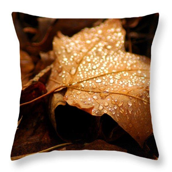 The enlightened Maple leaf Throw Pillow by LeeAnn McLaneGoetz McLaneGoetzStudioLLCcom