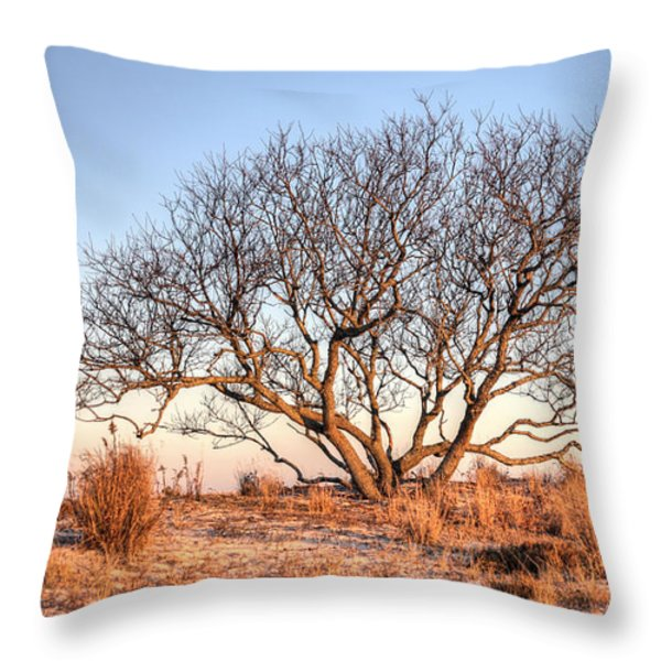 The Family Tree Throw Pillow by JC Findley