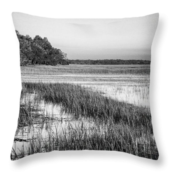The Flats Throw Pillow by Phill  Doherty