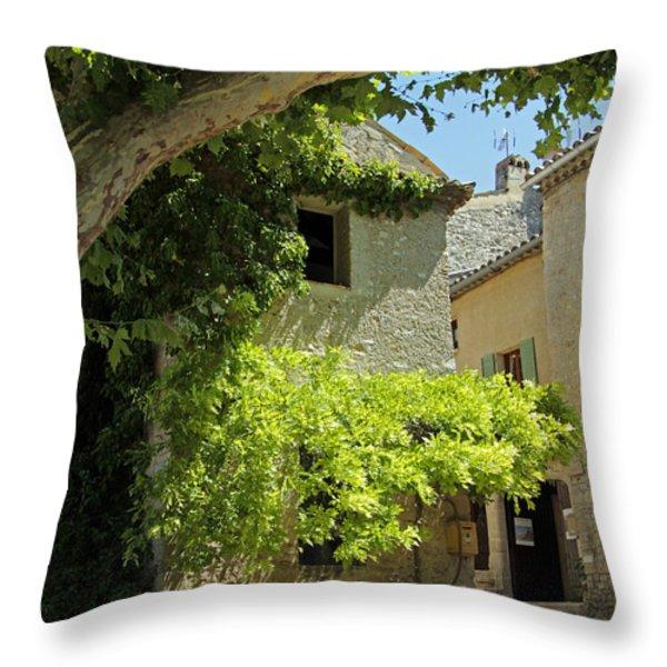 The Flower Box Throw Pillow by John Stuart Webbstock