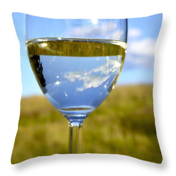 The Glass is Half Full Throw Pillow by Thomas R Fletcher