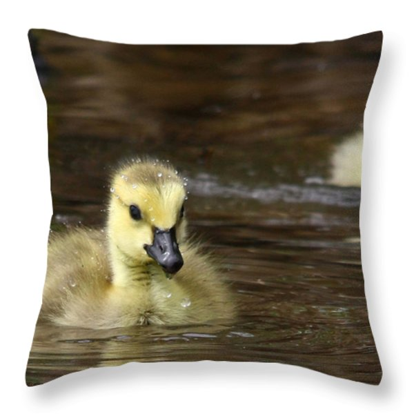 The Golden One Throw Pillow by Lori Deiter