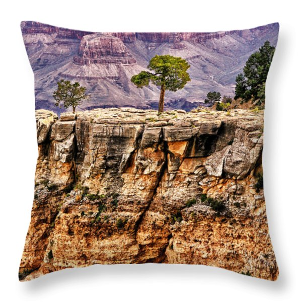The Grand Canyon Iv Throw Pillow by Tom Prendergast
