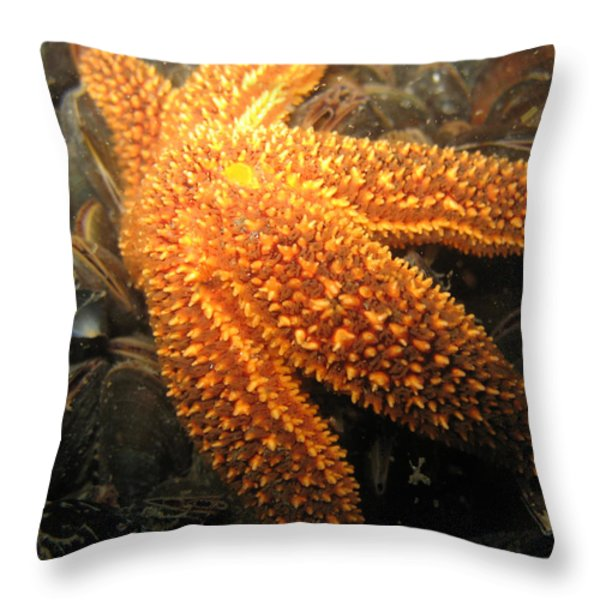 The Great Starfish Throw Pillow by Paul Ward