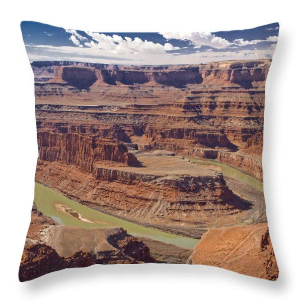 The Green-hued Colorado River Running Throw Pillow by Mike Theiss