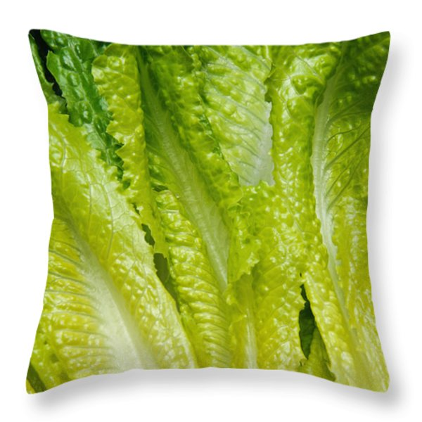 The Heart Of Romaine Throw Pillow by Andee Design