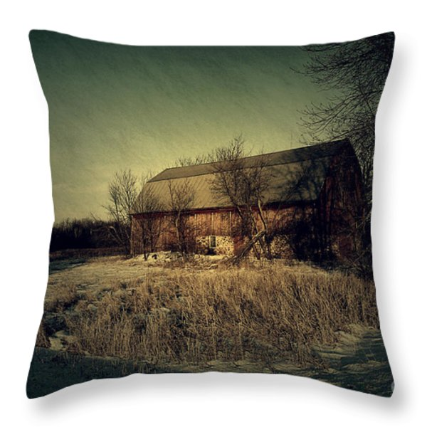 The Hiding Barn Throw Pillow by Joel Witmeyer