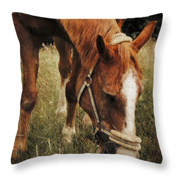 The Horse Throw Pillow by Angela Doelling AD DESIGN Photo and PhotoArt