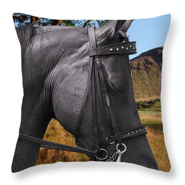The Horse - God's Gift To Man Throw Pillow by Christine Till