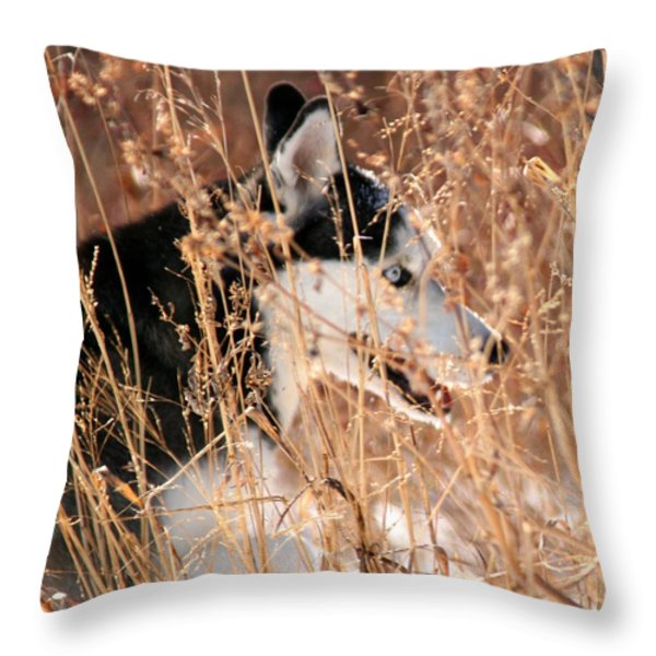 The Huntress square Throw Pillow by David Dunham
