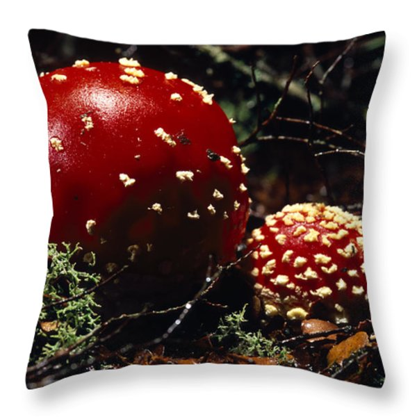 The Introduced Bright Red Fly Agaric Throw Pillow by Jason Edwards