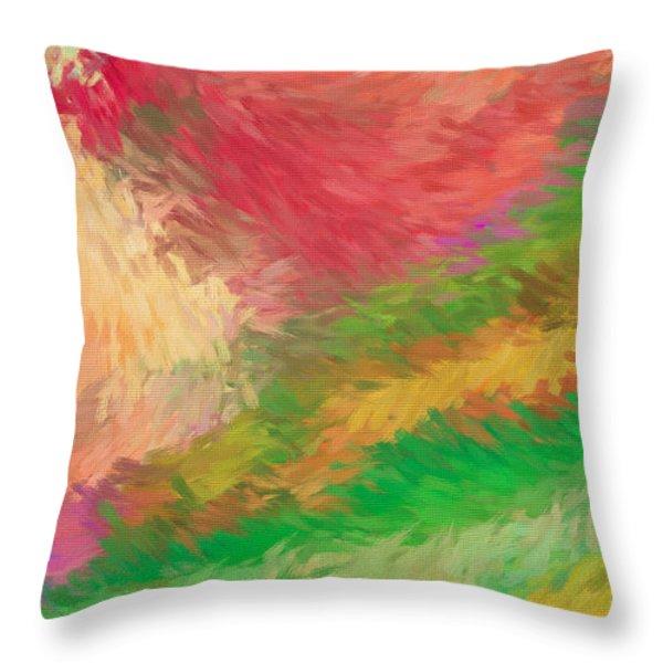 The Journey Throw Pillow by Deborah Benoit