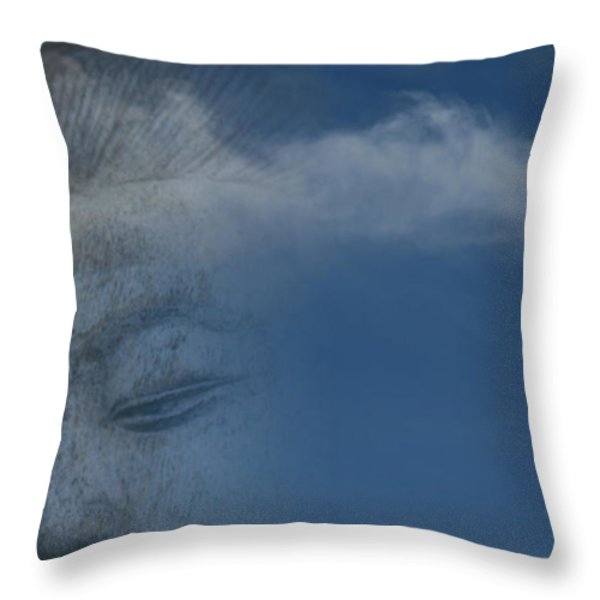 The Journey Throw Pillow by Sharon Mau