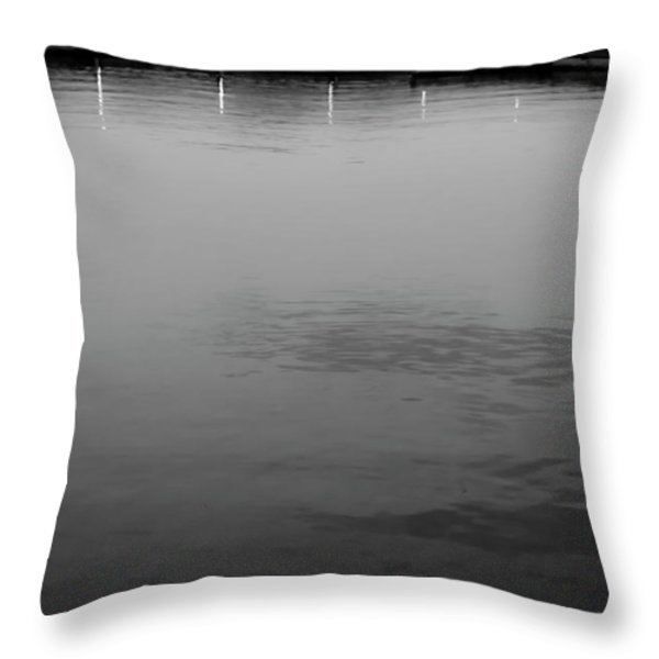 The Lake At Dusk Throw Pillow by David Patterson