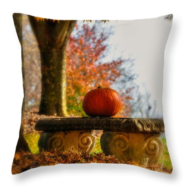 The Last Pumpkin Throw Pillow by Lois Bryan