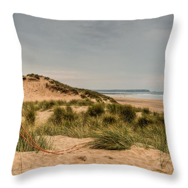 The Lifebelt Throw Pillow by Steve Purnell