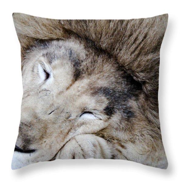 The Lion Sleeps Throw Pillow by Elizabeth Hart