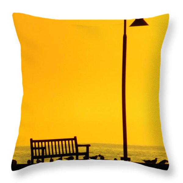 The Long Wait Throw Pillow by Karen Wiles