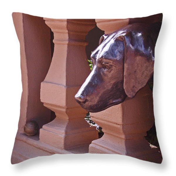 The Lost Ball Throw Pillow by Rona Black