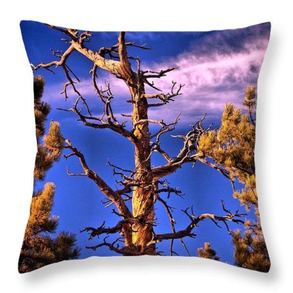 The Lurker Throw Pillow by Charles Dobbs