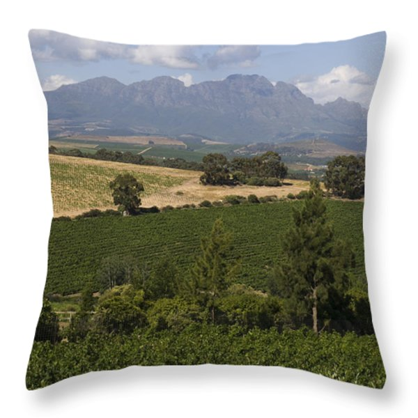 The Lush Garden Landscape Of A Vineyard Throw Pillow by Stacy Gold