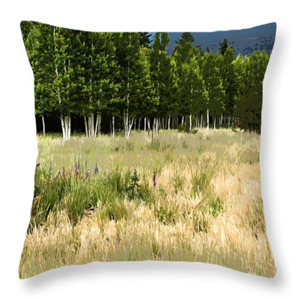 The Meadow Digital Art Throw Pillow by Phyllis Denton