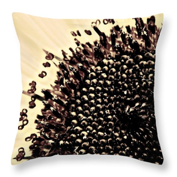 The Middle Throw Pillow by Chris Berry