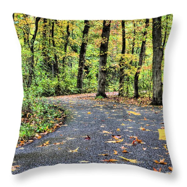 The Mount Vernon Trail. Throw Pillow by JC Findley