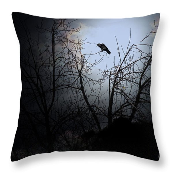The Night The Raven Appeared In My Dream . 7D12631 Throw Pillow by Wingsdomain Art and Photography