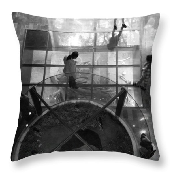 The Oculus Throw Pillow by Lynn Palmer