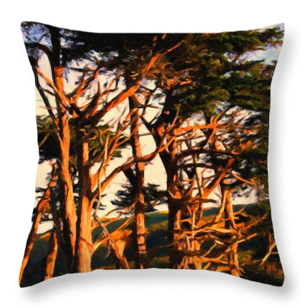 The Old Grove At The Ranch At Sunset . 40d4531 . Painterly Throw Pillow by Wingsdomain Art and Photography