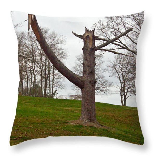 The Orator Throw Pillow by Douglas Barnett