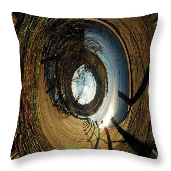 The Other Side Throw Pillow by LeeAnn McLaneGoetz McLaneGoetzStudioLLCcom