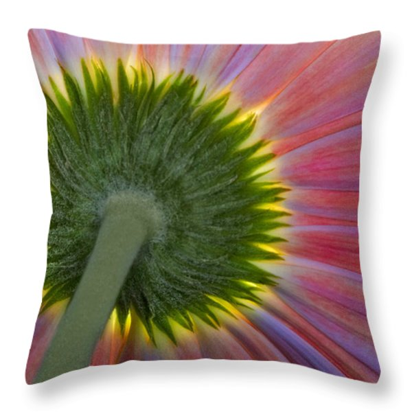 The Other Side Throw Pillow by Susan Candelario