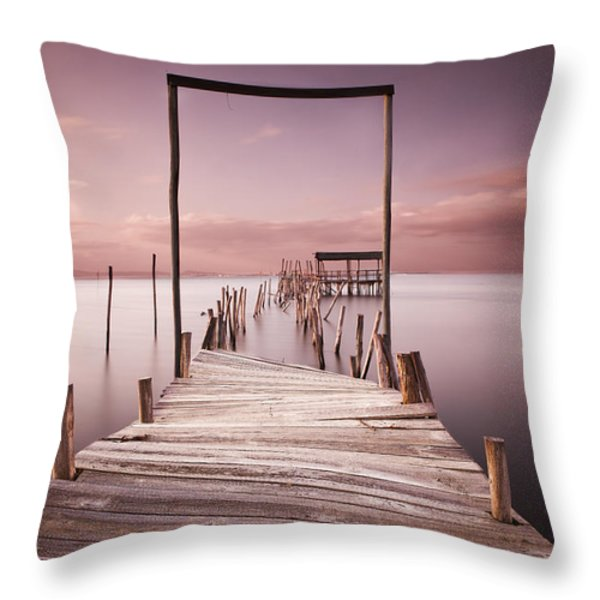 The Passage To Brightness Throw Pillow by Jorge Maia