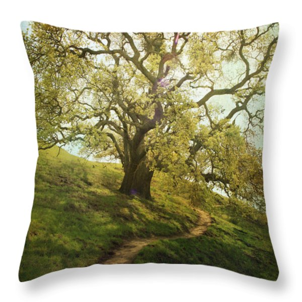 The Path To Brighter Days Throw Pillow by Laurie Search