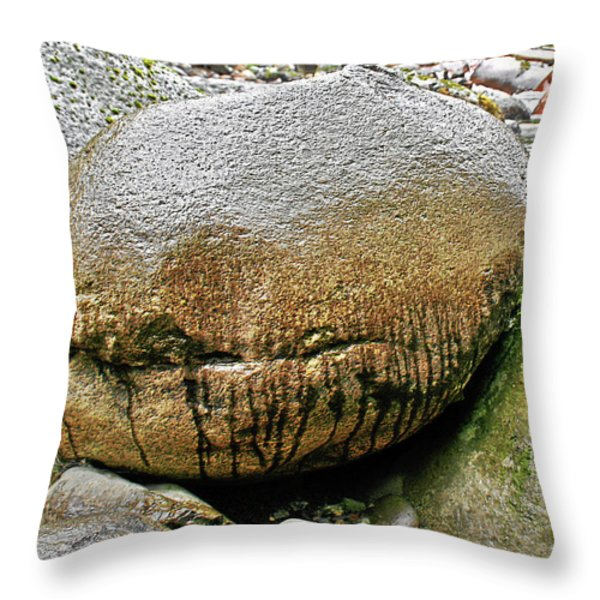 The philosophers' stone Throw Pillow by Christine Till