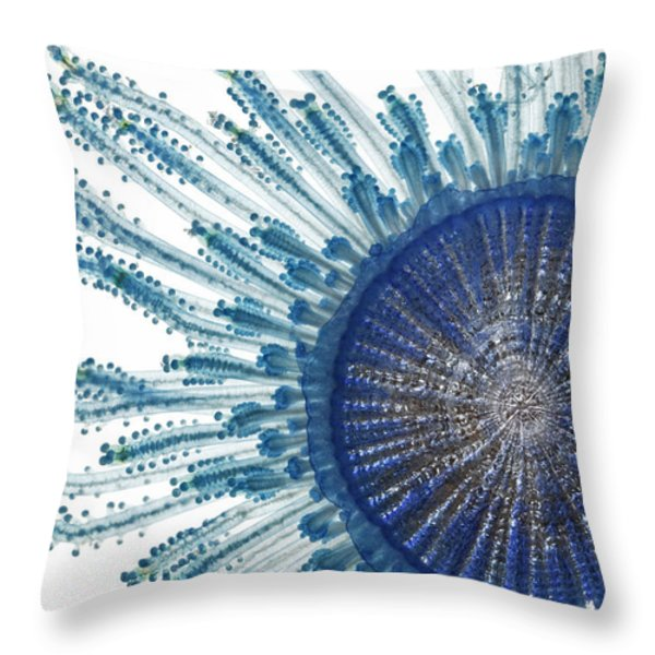 The Pigment Of A Blue Button Jellyfish Throw Pillow by David  Liittschwager