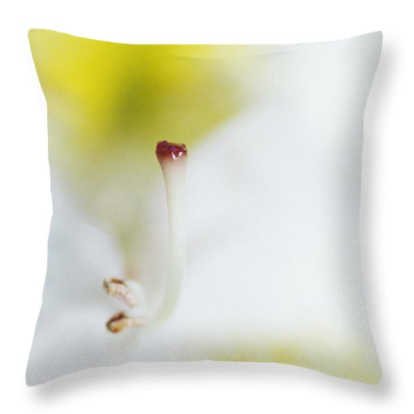 The Pistol Of A White And Yellow Throw Pillow by Jason Edwards