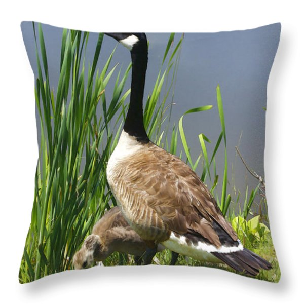 The Protector Throw Pillow by Deborah Benoit