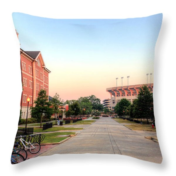 The Quad Throw Pillow by JC Findley