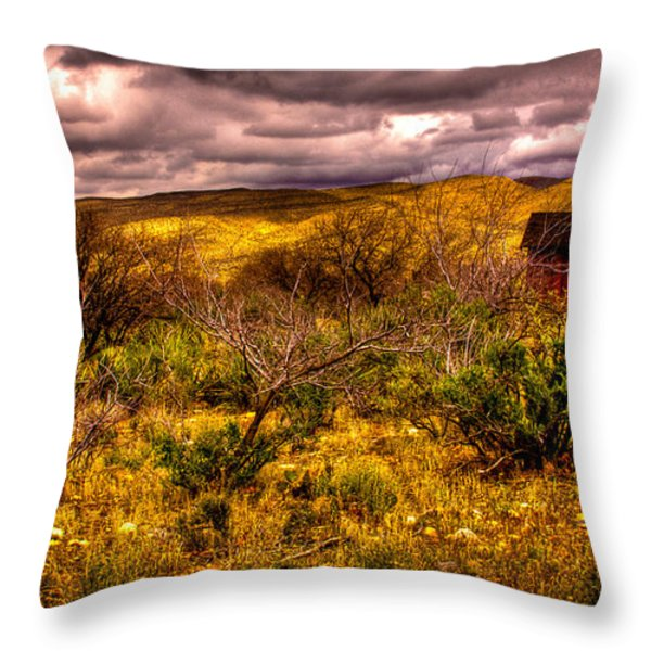 The Red Shed At Red Rock Canyon Throw Pillow by David Patterson