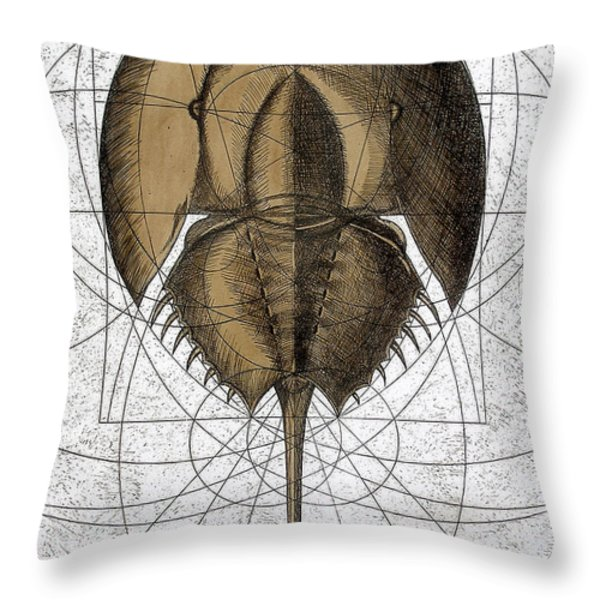 The Remnant Throw Pillow by Charles Harden