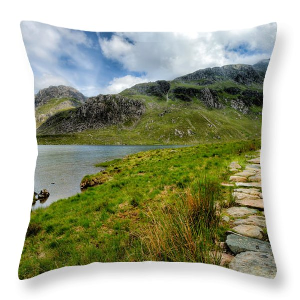 The Rocky Path Throw Pillow by Adrian Evans