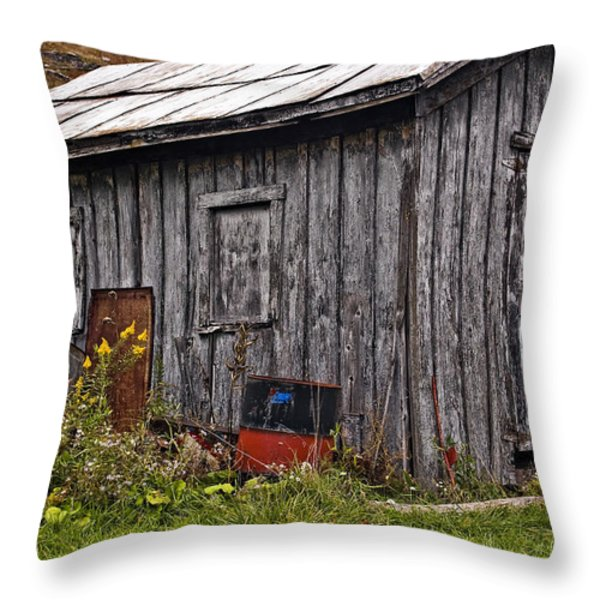 The Shed Throw Pillow by Steve Harrington