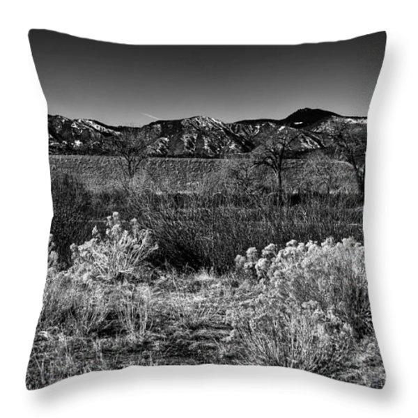 The South Platte Park Landscape II Throw Pillow by David Patterson