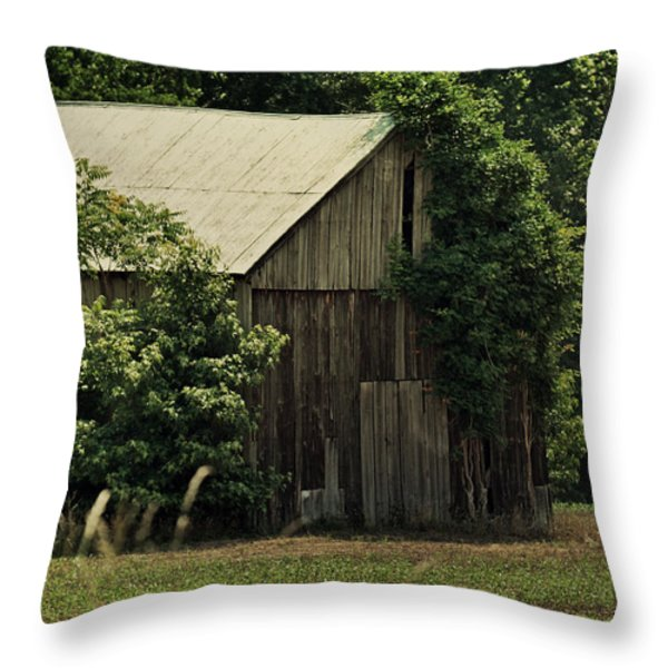 The Summer Barn Throw Pillow by Rebecca Sherman