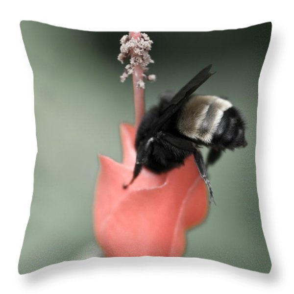 The Sweet Spot Throw Pillow by Charles Dobbs